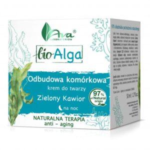 bioalgi