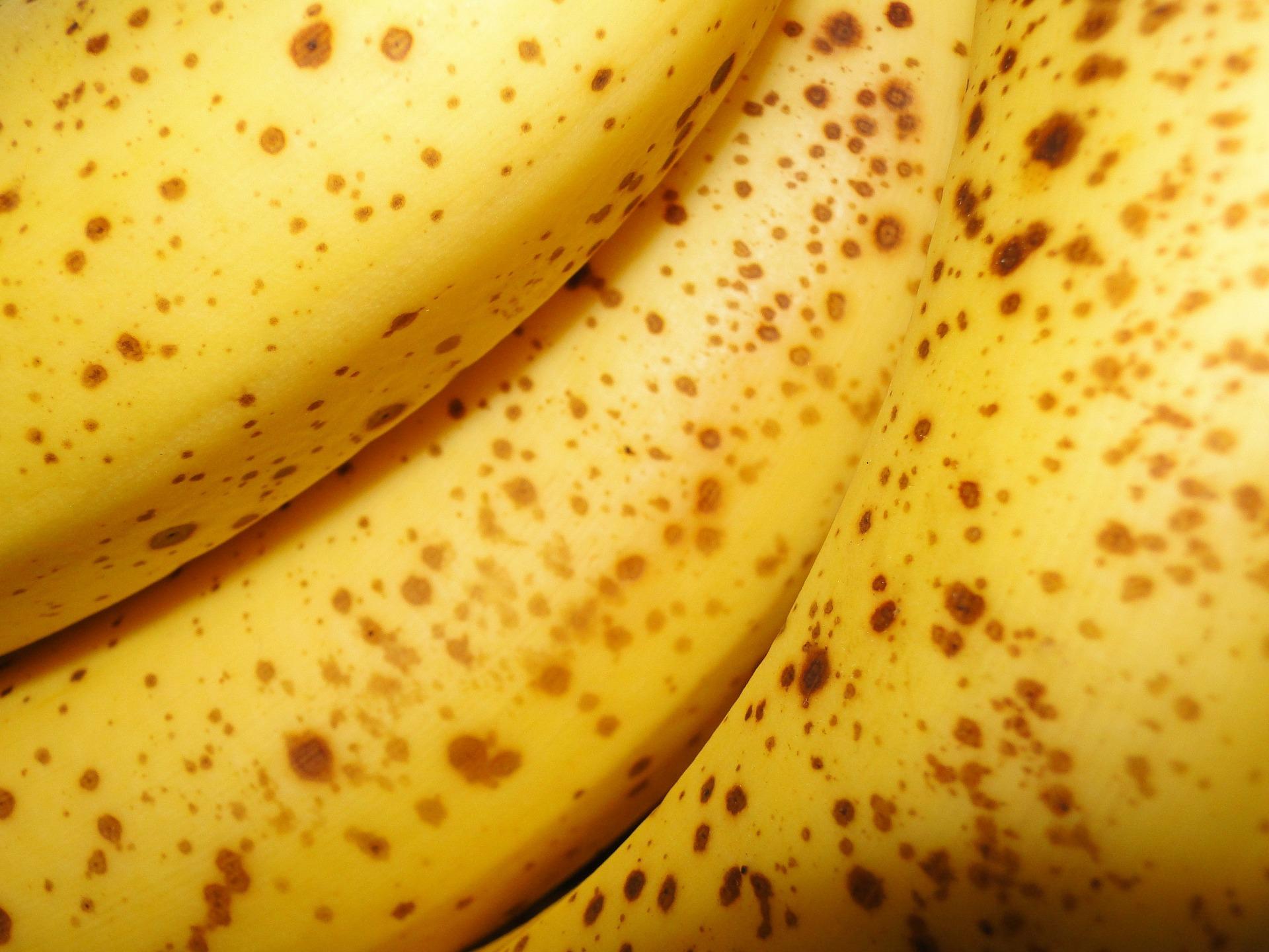 5 super pokarmow, ktore pomoga ci pokonać poranne zmeczenie