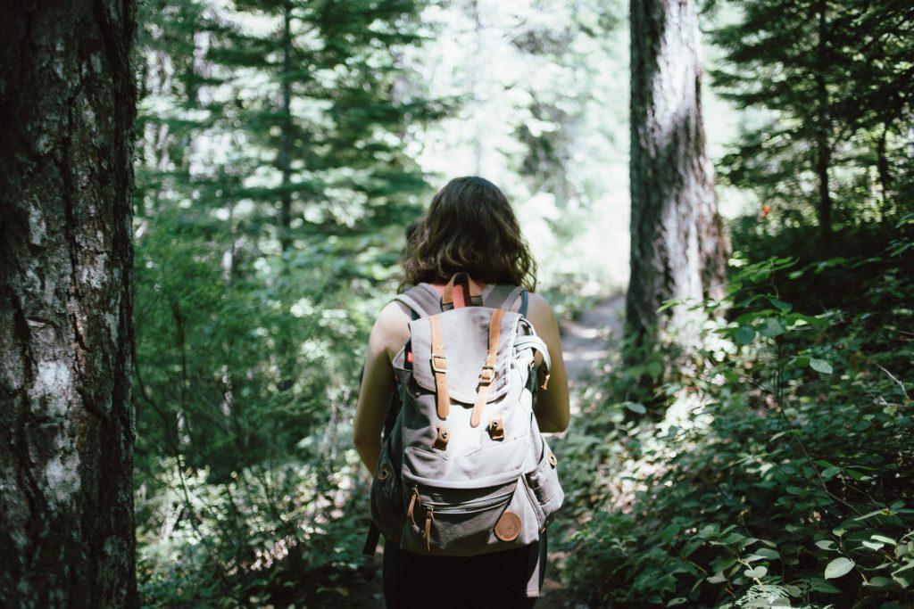 dlaczego lesna kapiel to esencja zdrowia